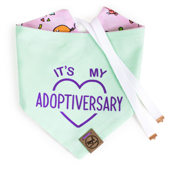 Barkday Reversible Birthday Dog Bandana