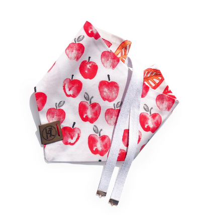Apple Orchard Reversible Dog Bandana