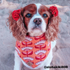 Cute Cocker Spaniel Dog in Groovy Gardens Summer Bandana made by Royal Collections and Co.