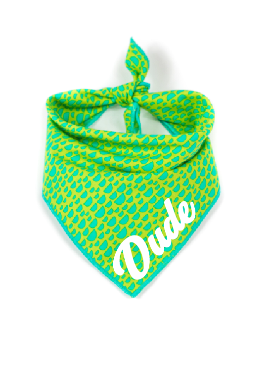 Green and Aqua Reversible Dog Bandana made by Royal Collections and Co.