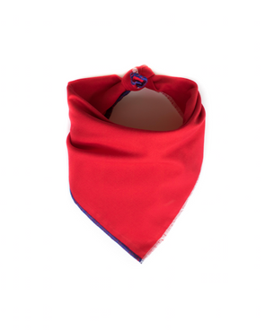 Pawtriotic Bandana - Red