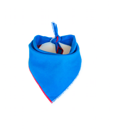 Pawtriotic Bandana - Blue