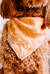 Up Close photo of Harvest Dog Bandana made by Royal Collections and Co. on Goldendoodle