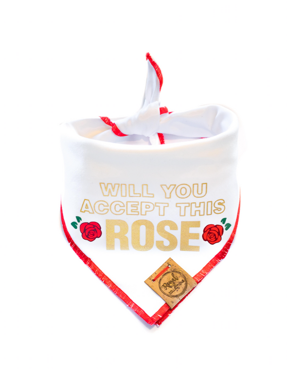 Will You Accept this Rose? Bachelor Inspired Valentines Day Dog Bandana made by Royal Collections and Co.