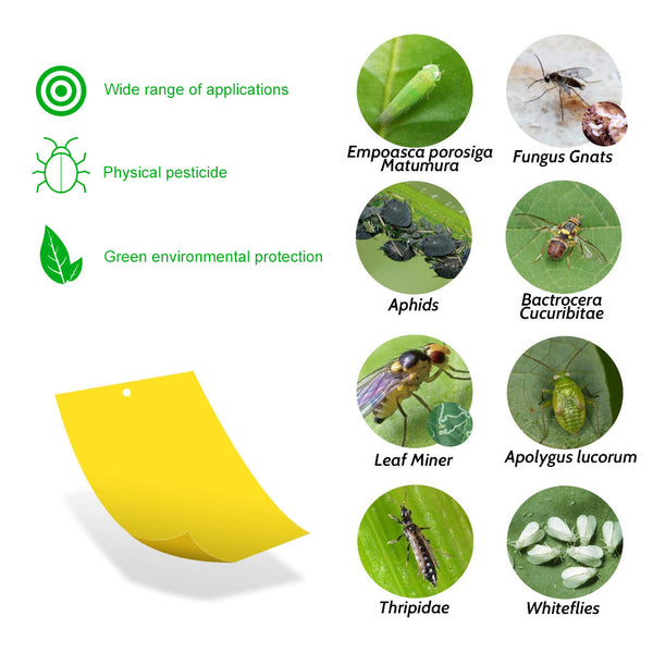 Hanging Sticky Fly Trap for Plants - 20pcs-Clickmylife
