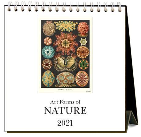 Found Image Press Desk Calendar, Art Forms of Nature, 2021