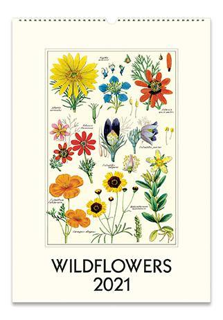 Cavallini Wildflowers Wall Calendar 2021
