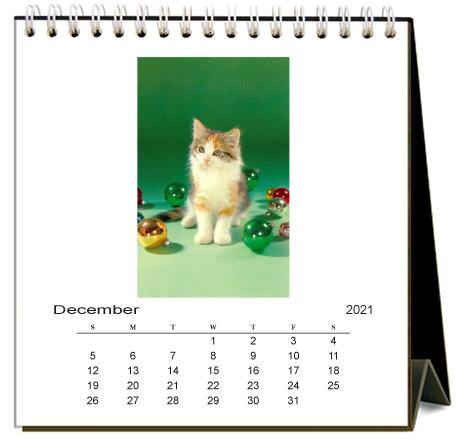 Found Image Press Desk Calendar, Cute Kittens, 2021