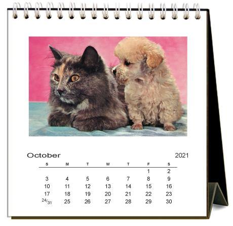 Found Image Press Desk Calendar, Puppy Love, 2021