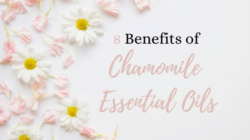 benefits-of-chamomile-essential-oil