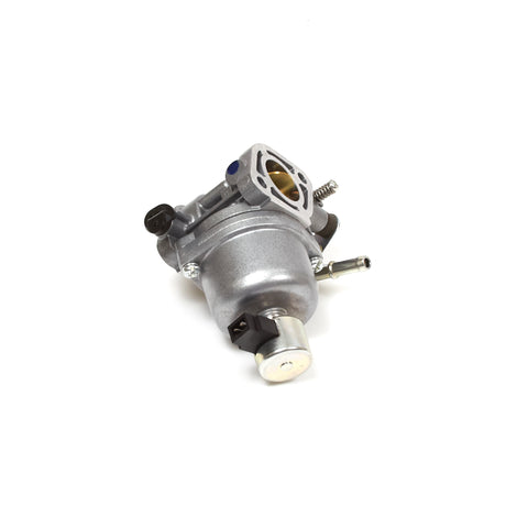 Briggs & Stratton 699807 Carburetor