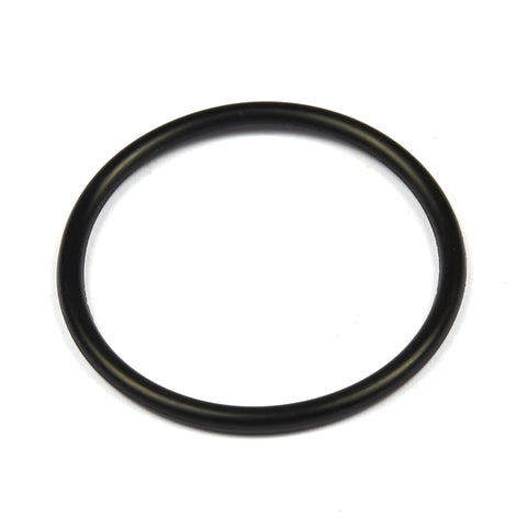 Briggs and Stratton 690589 Seal O-Ring