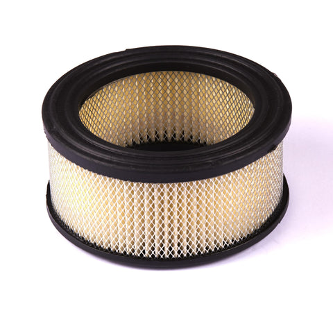 Briggs and Stratton 392286 Air Filter