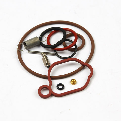 Briggs & Stratton 590589 Carburetor Overhaul Kit