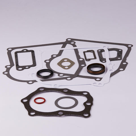 Briggs & Stratton 391662 Engine Gasket Set