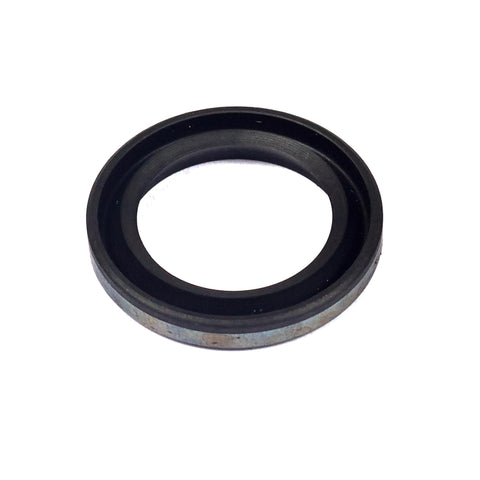 Briggs & Stratton 299819S Oil Seal