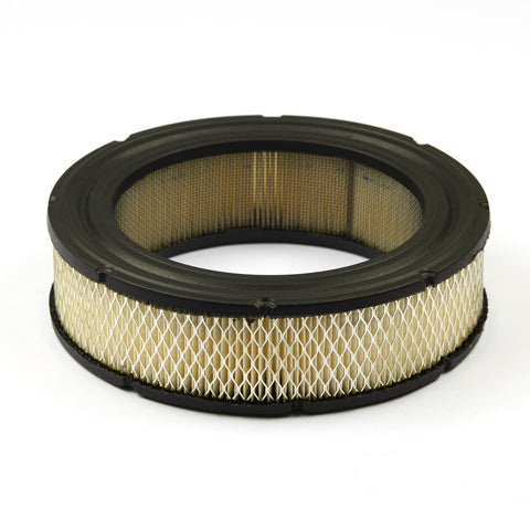 Briggs and Stratton 692519 Air Filter