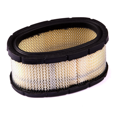 Briggs and Stratton 393725 Filter-A/C Cartridge