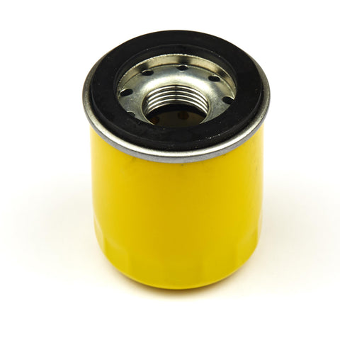 Briggs and Stratton 795990 Oil Filter