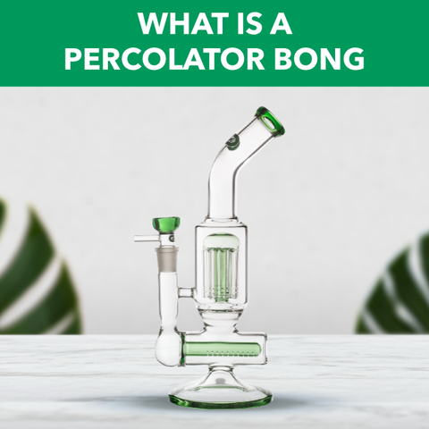 What is a Percolator Bong?