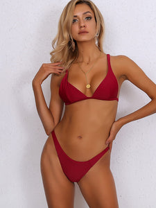 BIKINI Triangle Top With High Cut Bikini Set - EK CHIC