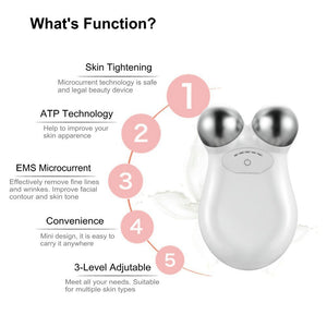 FACE LIFT MACHINE Face Lift Microcurrent Roller Massager Machine - EK CHIC