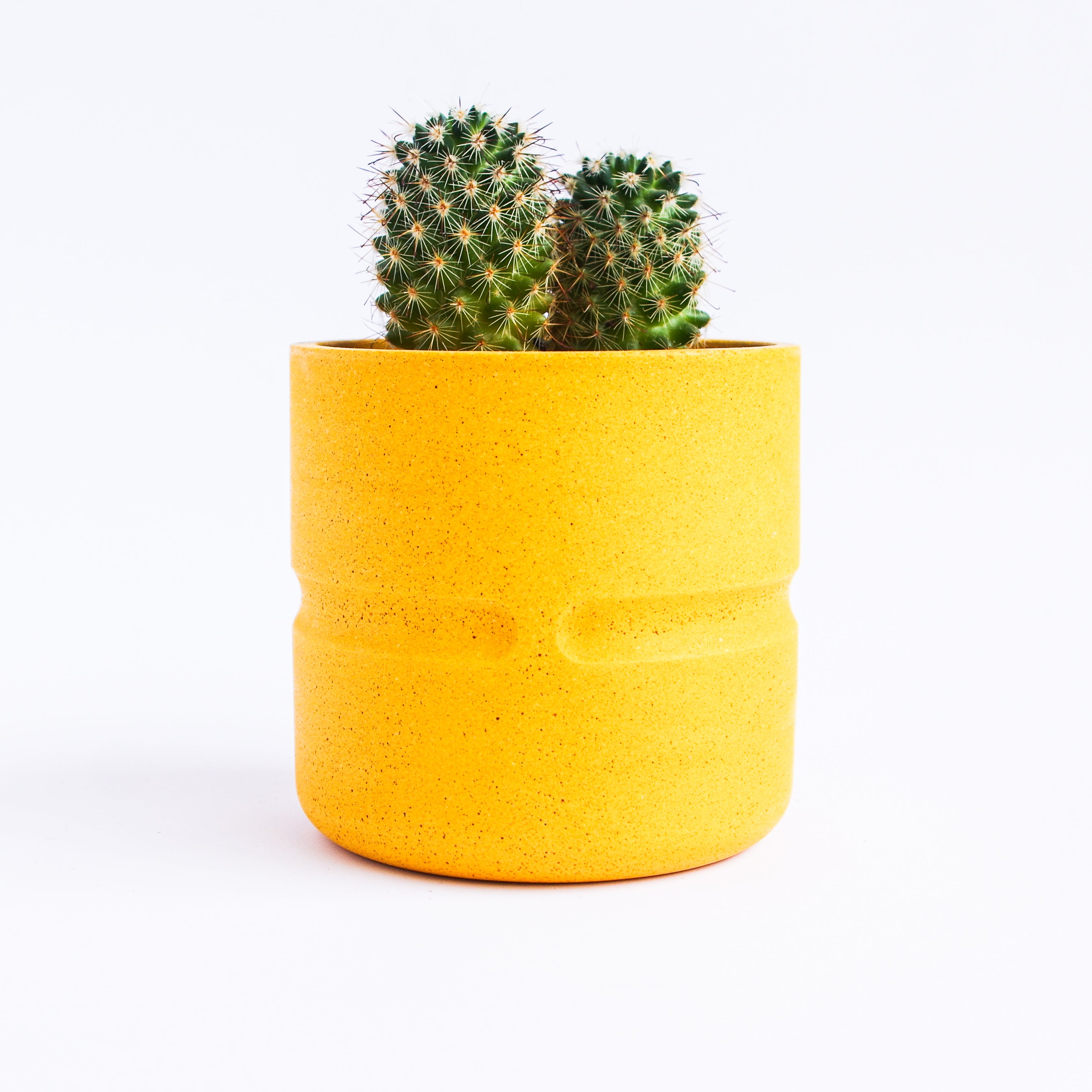 Chubby Pot in Mustard Yellow