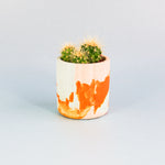 Load image into Gallery viewer, SPLODGE Tangerine Mini Pot