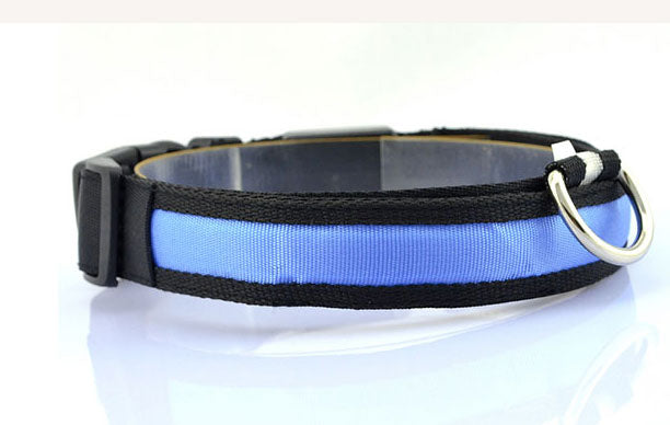 Glow Pet Collar - Deals You May Like
