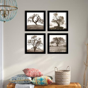 Tree Set Of 4 Black Framed Art Prints Size - 9 x 9 Inch