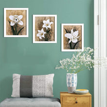 Load image into Gallery viewer, White Lilly Set Of 3 White Framed Art Prints Size - 8 x 10 Inch