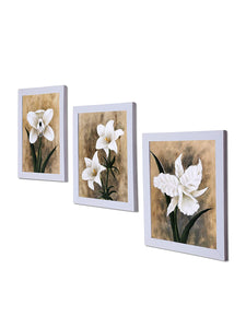 White Lilly Set Of 3 White Framed Art Prints Size - 8 x 10 Inch