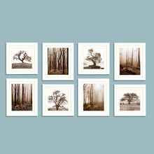 Load image into Gallery viewer, Seesaw Individual Wall Photo Frame Set (Brown)
