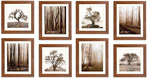 Seesaw Individual Wall Photo Frame Set (Brown)