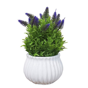 Artificial Table Plants  in Ceramic Pot/Planter for Home.