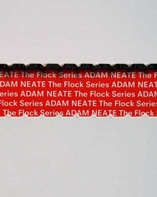 Adam Neate : THE FLOCK SERIES book