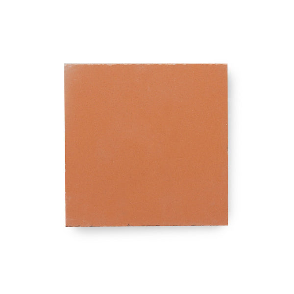 Coral - tile sample