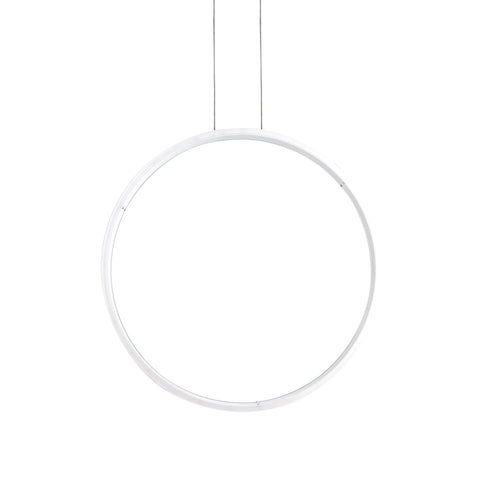 Vertical Ring LED Pendant Lamp - The Lighting Club - Perth - Lighting