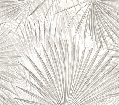 Macduff Silver Palm Fronds Wallpaper Wallpaper