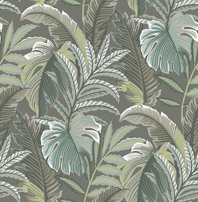 Verdant Dark Grey Botanical Wallpaper Wallpaper
