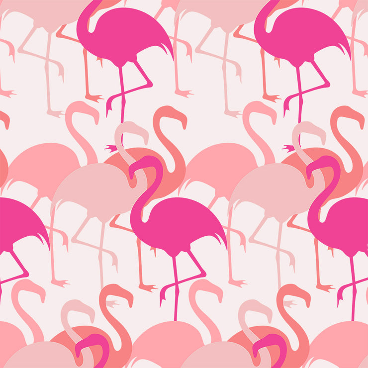 Flamingo - Pink Wallpaper