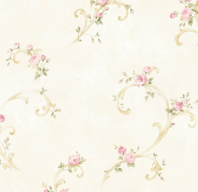 Betty Pink Tearose Acanthus Trail Wallpaper Wallpaper Wallpaper