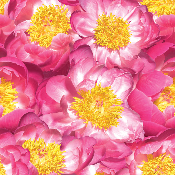 Pink Peony Mural