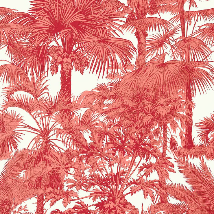 Palm Botanical - Coral Wallpaper