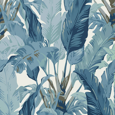 Travelers Palm - Spa Blue Wallpaper