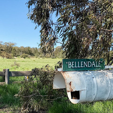 Bellendale-Temora-Home-of-Bird-on-the-Hill-Furniture-Paint