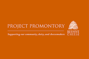 Project Promontory goes Indiegogo