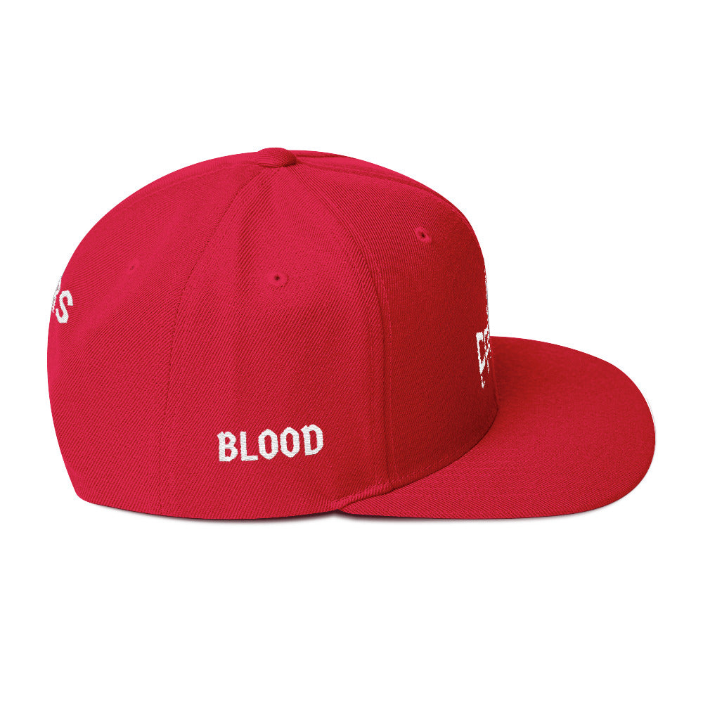 Combat Legend Blood Sweat and Tears Snapback 1