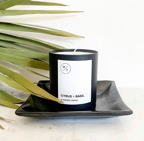 Modern Theory citrus and basil candle on display