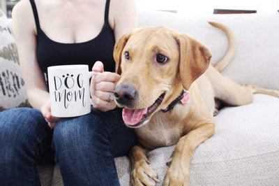 Namaste Home With My Dog Mug